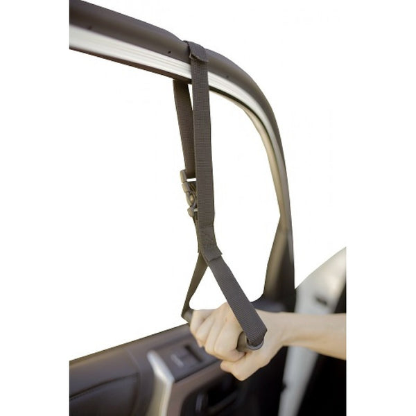 Auto Assist Handle