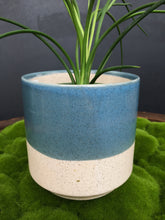 Load image into Gallery viewer, Pot Miguel Blue/White 4.5""