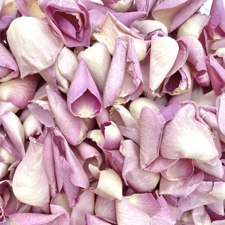 Freeze Dried Petals