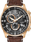 Citizen Chrono Perpetual Rose At4133-09e