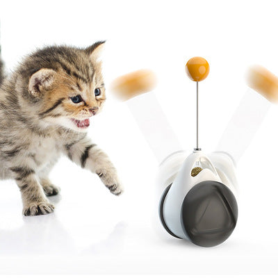 2020 Pet Product New Hot Sale Balance Swing Car Toy