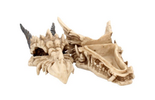 Load image into Gallery viewer, Dragon skull trinket box 20cm