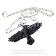 Load image into Gallery viewer, Black raven necklace - Alchemy gothic