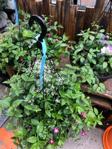 "Hanging Basket - 15"" Mixed Premium Shade Loving"