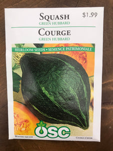 Winter Squash – Green Hubbard
