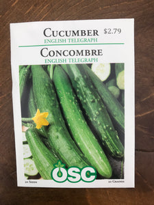 Cucumber – Specialty English Telegraph