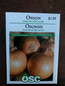 Onion - Early Yellow