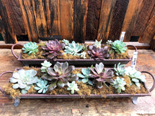 Load image into Gallery viewer, Succulent Planter