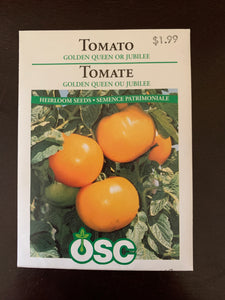 Tomato - Golden Queen or Jubilee