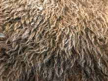 Load image into Gallery viewer, Sheepskin