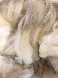 Raw Natural White Corriedale Fleece