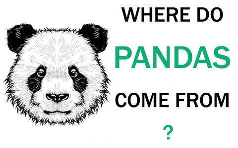 where-do-pandas-come-from