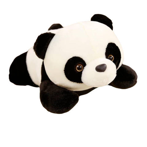 Cute Panda Teddy Bear | We Love Panda