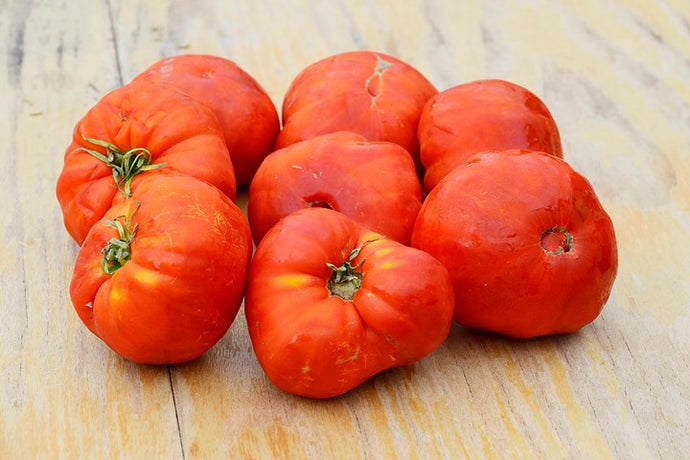 Tomates moches mûres pour cuisiner - 3lbs - (environ 5-6 tomates)