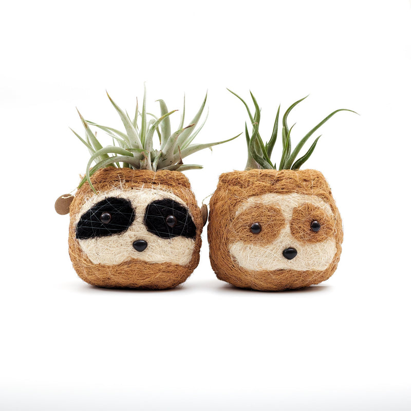 Sloth planters made by artisans in the Philippines out of sustainable coco coir.