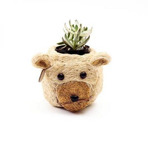 Mini Coco Coir Bear Planter