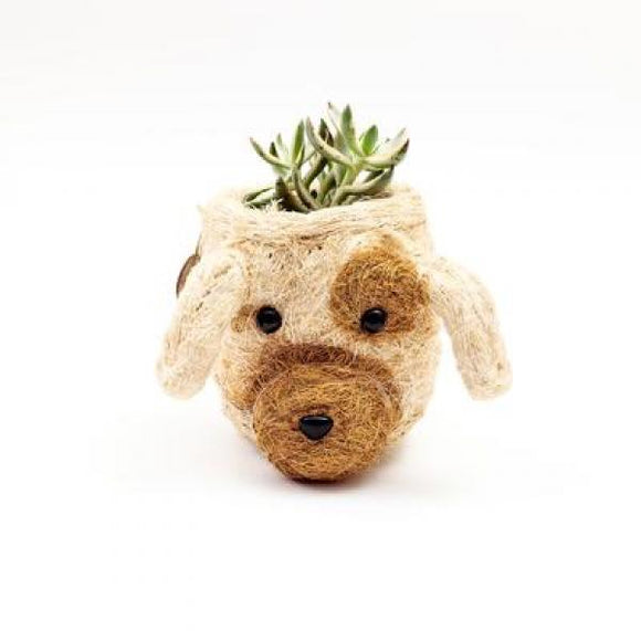Mini Coco Coir Dog Planter