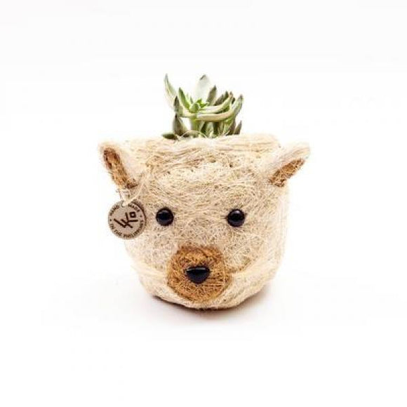 Mini Coco Coir Planter- Cat