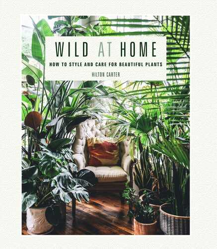 Wild at Home: How to Style and Care for Beautiful Plants by: Hilton Carter