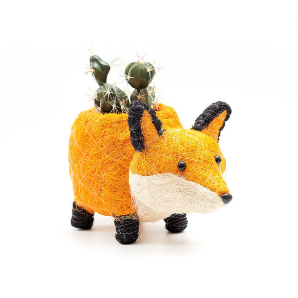 Coco Coir Fox Planter