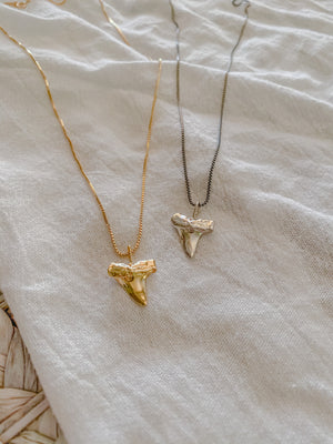 Shark Tooth Necklaces - Mae Cargo