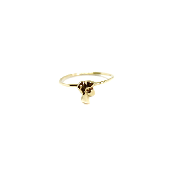 Alpine Mini Vertigo Ring