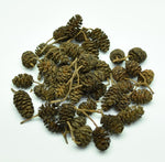 Load image into Gallery viewer, 15 Grams of Black Alder Cones, Alnus glutinosa catkins.