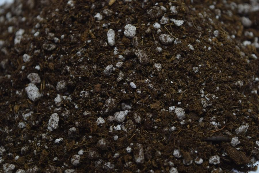 Close up of Sphagnum Peat moss and Perlite