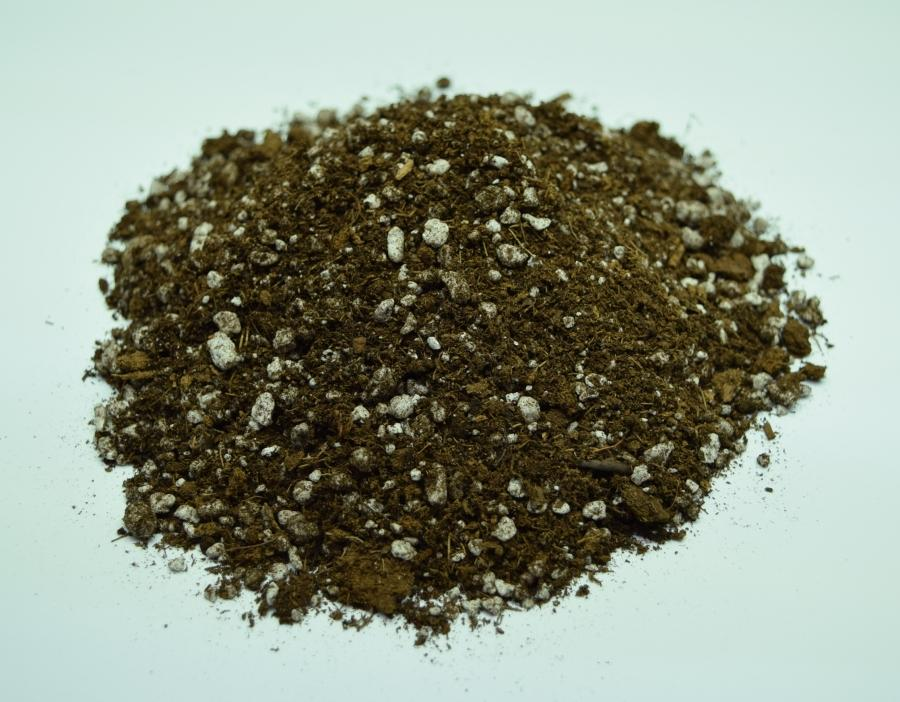 Mixture of Sphagnum Peat moss and Perlite in Carnivorous plant soil.