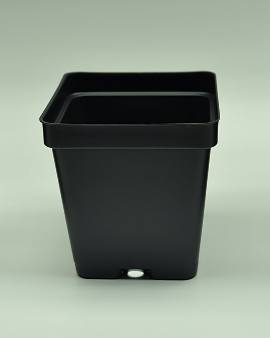 "Close up of 3.25"" Square Black Plasic Pot."
