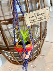 Mini Macrame Succulents - Purple