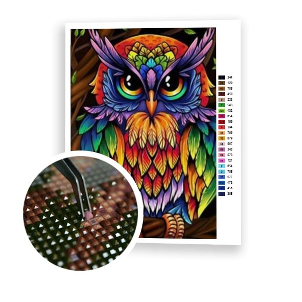 Colorful Owl - Art of Diamond Painting