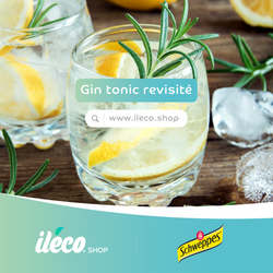 🍸 COCKTAIL GIN TONIC REVISITE