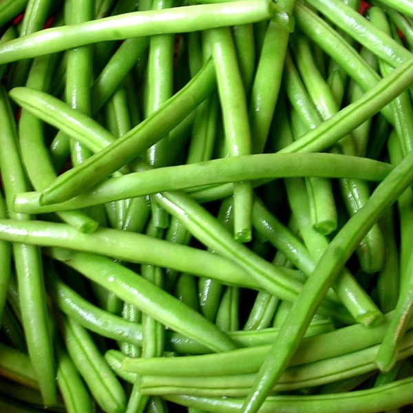 HARICOTS VERTS EXTRA FINS 800G PPB