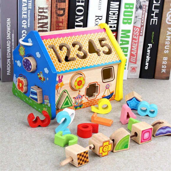 Wooden Shape Match Puzzle Toy