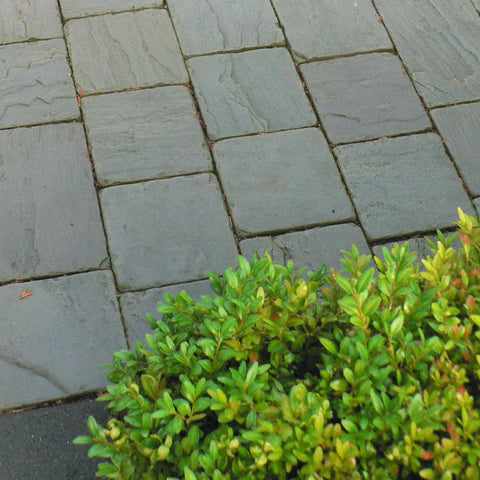 Grey Riven Tumbled Block Paving