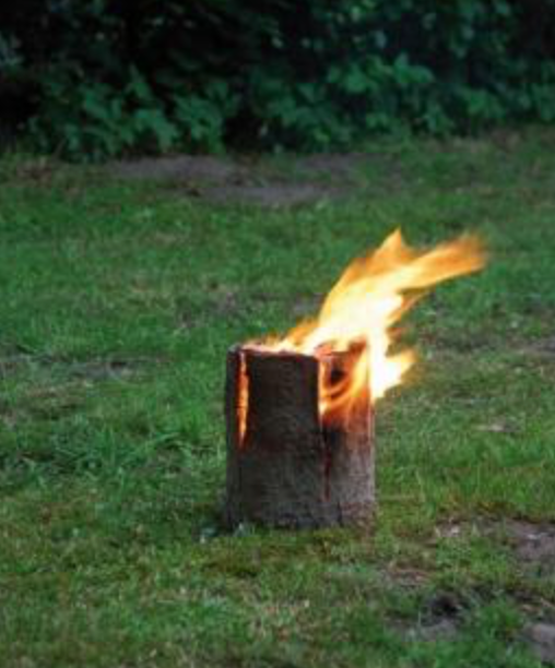 Medium Fire Log