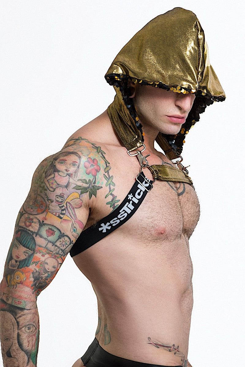 Hooded Harness Black Gold Featured Image