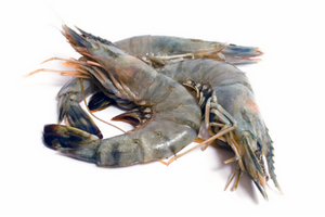 King Prawns (frozen)