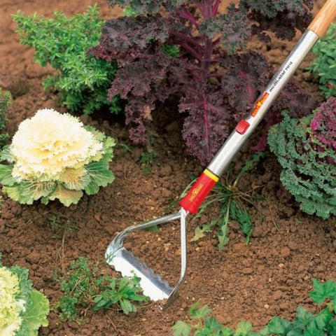 WOLF GARTEN | Multi-Change Push/Pull Weeder - Head Only