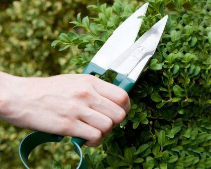 BURGON & BALL | Topiary Garden Trimming Shears - Small