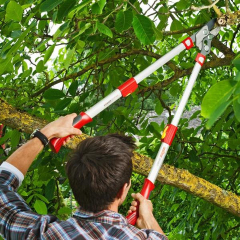 WOLF GARTEN | POWER Cut 'Premium Plus' Telescopic Anvil Tree Lopper - 900mm