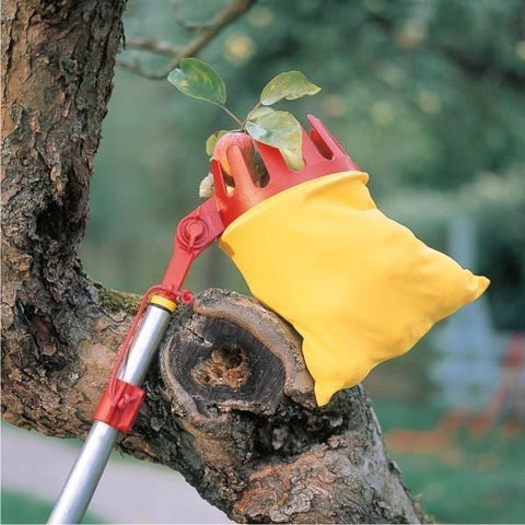 WOLF GARTEN | Multi-Star® Adjustable Fruit Picker - Head Only
