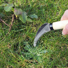 BURGON & BALL | Lawn Weeding Knife