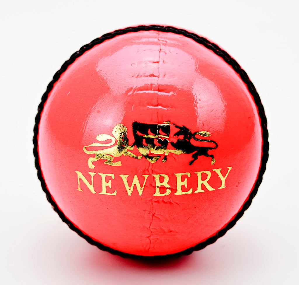 Newbery Player Grade 2 Pink Cricket Ball
