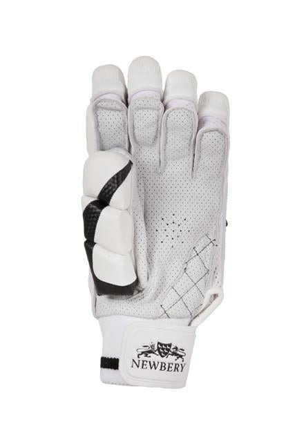 Free 2019 Fast Shipping Newbery Quantum Cricket Gloves