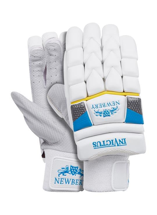 Invictus Cricket Batting Gloves