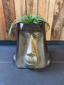 Monkey Head Pot