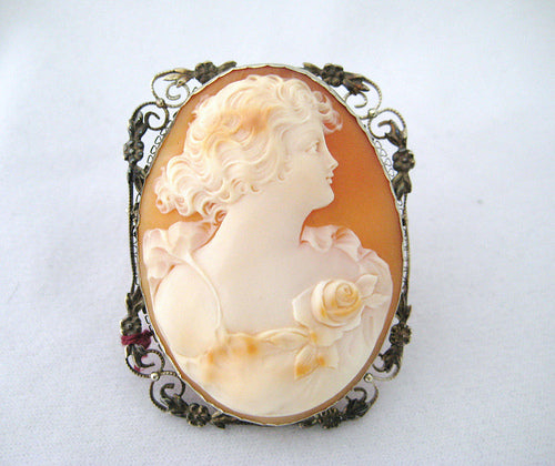 Beautiful Shell Cameo Pin and Pendant
