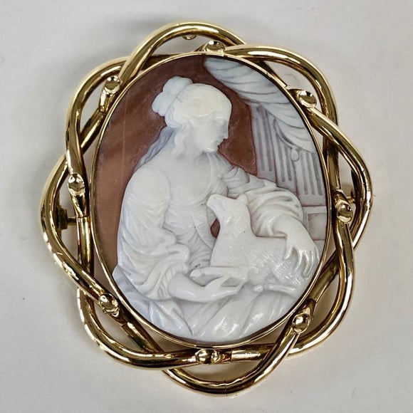 Gold Framed Shell Cameo Pin